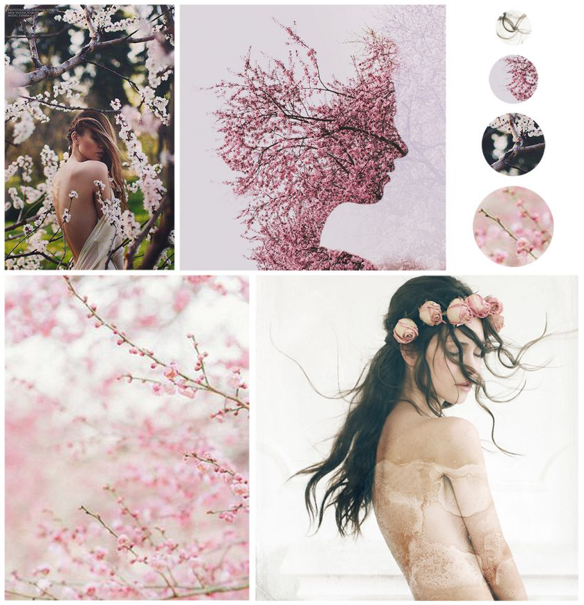 graphility-Marta-Hurtado--Contemporary-Portrait-Photography-inspiration-moodboard-flower-blossom-not-my-work